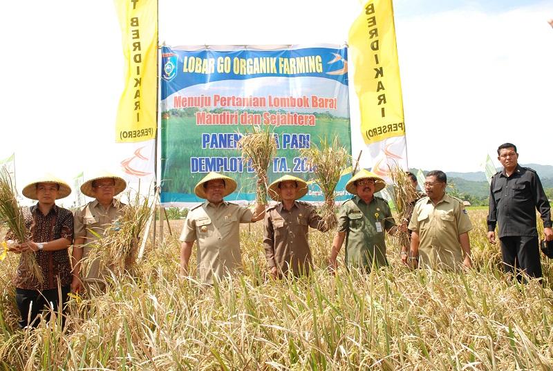 Pertanian Peternakan Dan Perkebunan Kabupaten Lombok Barat