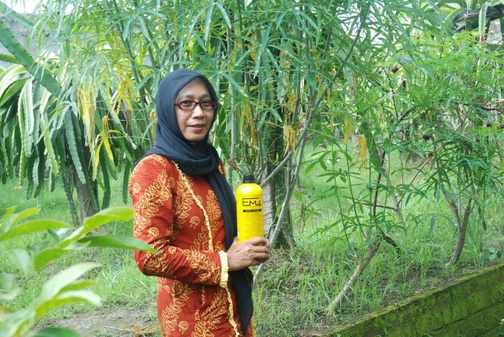 Bunda Henny Anwar di kebunnya di Gontoran Timur, Lingsar (12)