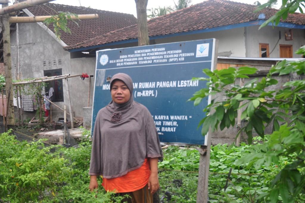 Ketua KWT Karya Wanita, Dusun Dasan Belo, Desa Jembatan Kembar Siti Hartini