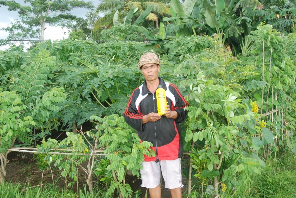 Raden Wardana
